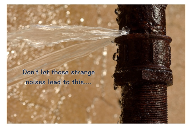 When to call the plumber Strange noises & Water Hammer pipes hissing pipes moaning. Call Wild Water Plumber