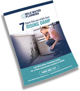 7 Signs that you may have rising damp 263x300 - Rising Damp Thank You