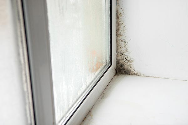 what is rising damp - Rising Damp Solutions