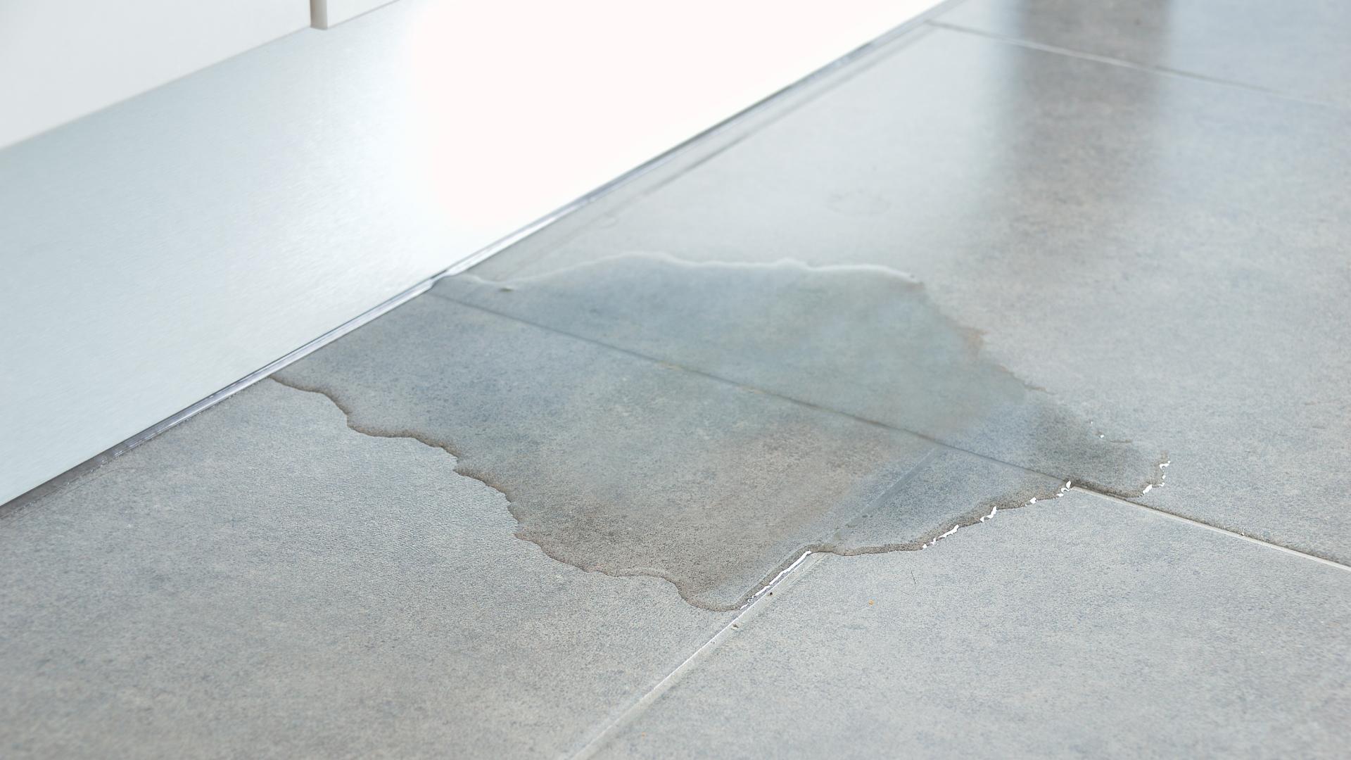 WWP Blog Water Damage Homes - Water Damage in Australian Homes